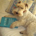 She's a highly intelligent dog!